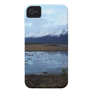 Lake on Maud Road iPhone 4 Cases