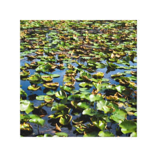 Lake pedals and leaf's canvas print