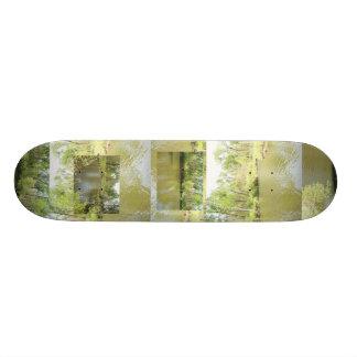Lake Penny Skate Board Decks