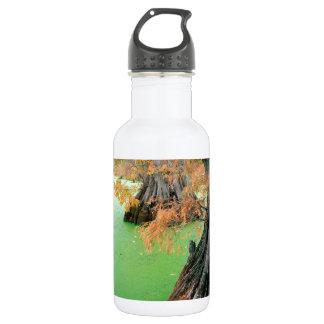 Lake Reelfoot Near Tiptonville Tennessee 532 Ml Water Bottle
