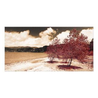 Lake shore photo card template