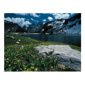 Lake Solitude , Grand Teton National Park , Postcard