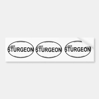 Lake Sturgeon Euro Stickers Bumper Sticker