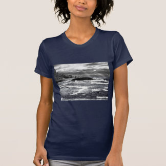 Lake Superior Lightrays T-shirts
