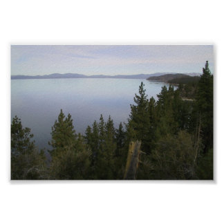 Lake Tahoe With Pine Trees Posters