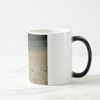 lake view magic mug