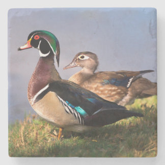 Lakeside, Wood Duck Stone Beverage Coaster