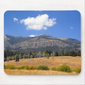 Lamar Valley Mouse Pad