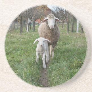 Lamb and sheep coaster