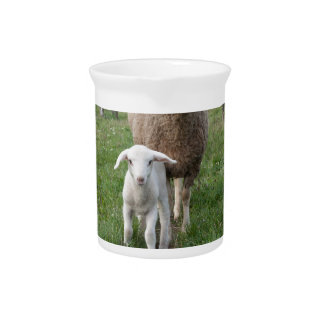 Lamb and sheep pitcher