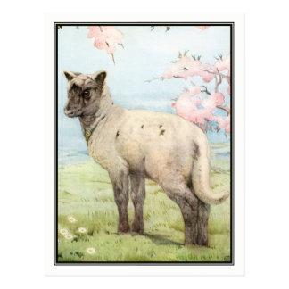 Lamb by E. J. Detmold Postcard