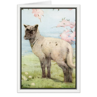 Lamb by Edward Julius Detmold Card
