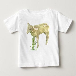 Lamb Grazing in Grass Baby Shirt