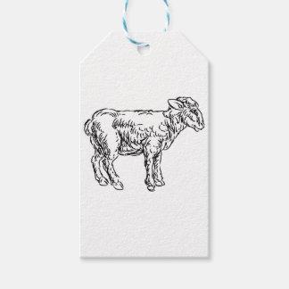 Lamb Sheep Food Grunge Style Hand Drawn Icon Gift Tags