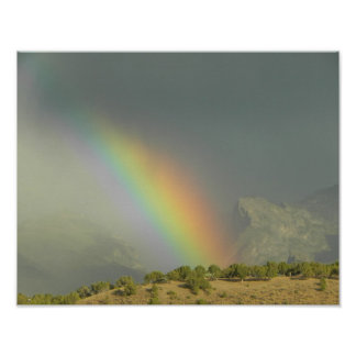 Lamoille Canyon Rainbow Print