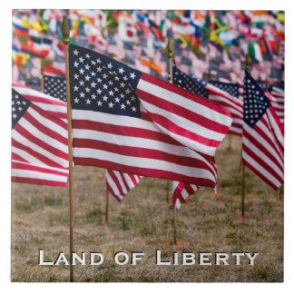 Land of Liberty Flag Tile B