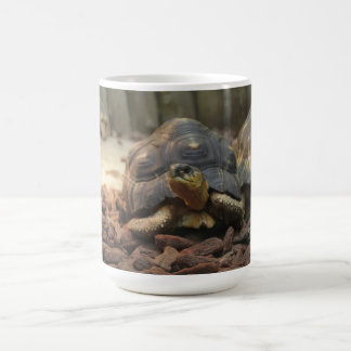 Land Turtle Coffee Mug