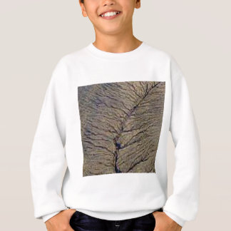 land veins sweatshirt