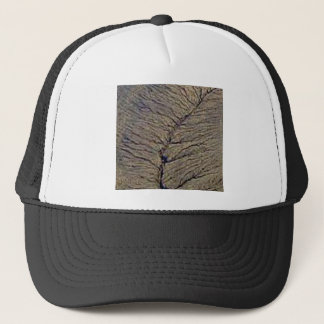land veins trucker hat