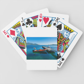 Landing stag and speed boat bicycle playing cards