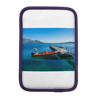 Landing stag and speed boat iPad mini sleeve