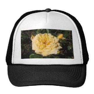 Landora Mesh Hat