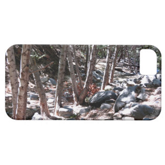 Landscape 5 iPhone 5 cases