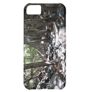 Landscape 6 cover for iPhone 5C