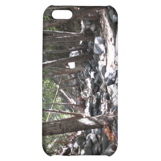 Landscape 6 iPhone 5C case