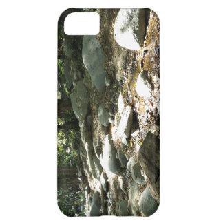 Landscape 8 iPhone 5C covers