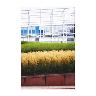 Landscape & Architecture Canvas