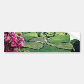 Landscape at Sao Miguel Acores Islands flowers Bumper Sticker