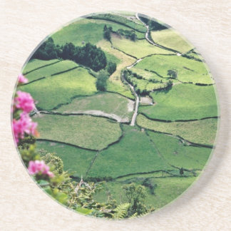 Landscape at Sao Miguel, Acores Islands  flowers Drink Coaster