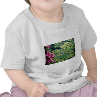 Landscape at Sao Miguel, Acores Islands  flowers Shirts