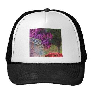 Landscape ,buganvillas  in full color cap