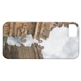 Landscape iPhone 5/5S Cover