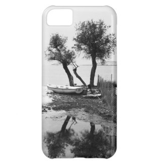 landscape iPhone 5C cases