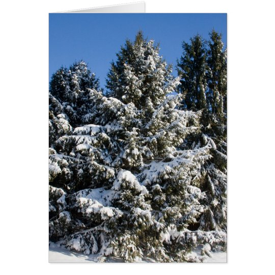 Landscape Christmas Cards