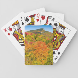 Landscape Forest Card decks