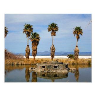 Landscape Mojave Desert 11x14 Photograph
