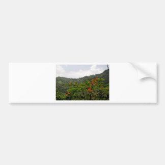 Landscape of Puerto Rico Bumper Sticker