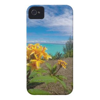 Landscape off will bora will bora iPhone 4 cases