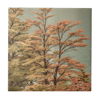 Landscape Scene Colored Trees at Glacier Lake Ceramic Tile