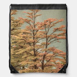 Landscape Scene Colored Trees at Glacier Lake Drawstring Bag
