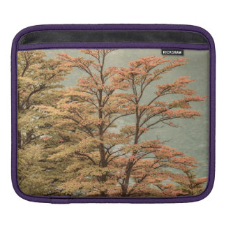 Landscape Scene Colored Trees at Glacier Lake iPad Sleeve
