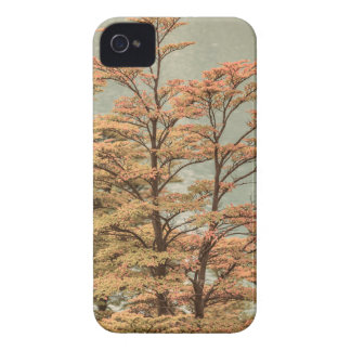 Landscape Scene Colored Trees at Glacier Lake iPhone 4 Case-Mate Cases