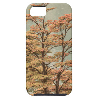 Landscape Scene Colored Trees at Glacier Lake iPhone 5 Case