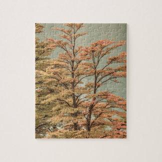 Landscape Scene Colored Trees at Glacier Lake Jigsaw Puzzle