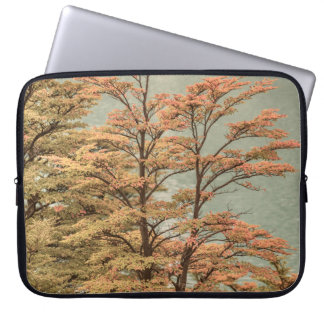 Landscape Scene Colored Trees at Glacier Lake Laptop Sleeve