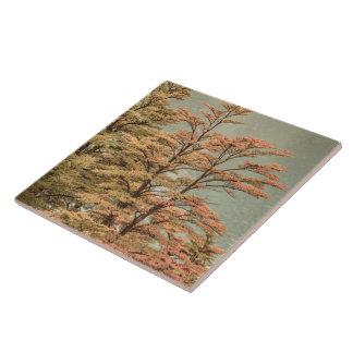 Landscape Scene Colored Trees at Glacier Lake Tile